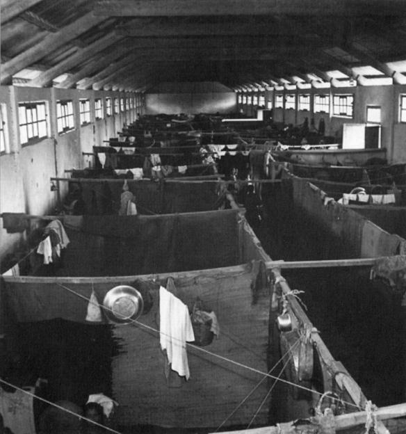Mia Mia camp, near Sidon (Lebanon), 1952